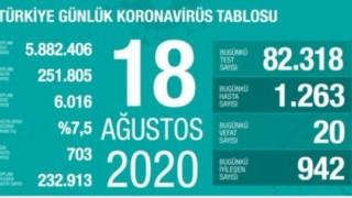 Türkiye'de 20 kişi koronavirüsten hayatını kaybetti