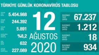 Türkiye'de koronavirüsten 18 kişi hayatını kaybetti