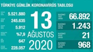 Türkiye'de koronavirüsten 21 kişi hayatını kaybetti