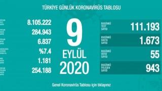 Türkiye'de 55 kişi koronavirüsten hayatını kaybetti