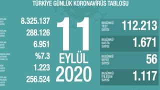 Türkiye'de 56 kişi koronavirüsten hayatını kaybetti