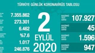 Türkiye'de Koronavirüs nedeniyle 45 kişi daha hayatını kaybetti