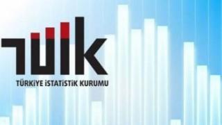 TÜİK: Türkiye'de işsizlikte düşüş yaşandı